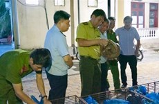 Couple arrested on suspicion of illegally transporting 150 kg of wild animals