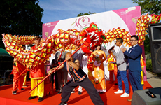 Festival spotlights Vietnamese culture, cuisine in Germany
