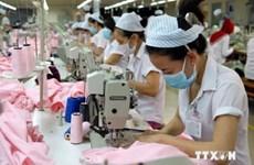 Over 79,000 new enterprises established in January-July