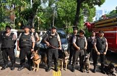 Indonesia establishes military elite unit to fight terrorism
