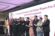 ASEAN urged to intensify cooperation in ensuring nuclear safety, security