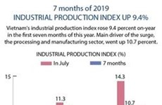 Industrial production gains stable growth in seven months