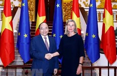 Vietnam wants to further boost relations with EU: PM