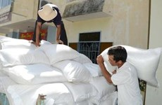 Government allocates rice for Dak Nong province