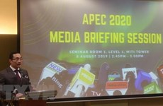 APEC Year 2020 to begin in November