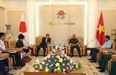 Vietnam, Japan boost cooperation in war consequence settlement