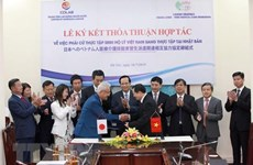 Vietnam, Japan step up human resources development cooperation