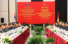 Vietnamese, Lao parties share inspection experience