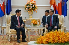 Vietnam prioritises assistance to Cambodia: official