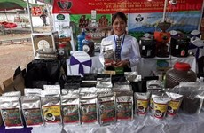 Cooperative turns Son La coffee into profitable business