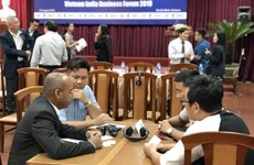 Vietnamese, Indian firms discuss trade, investment