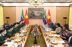 Vietnam, South Africa agree to maintain defence policy dialogue