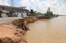 An Giang province's highway collapses into river