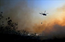 Indonesia: Four helicopters deployed to douse forest fires