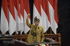 Indonesian President announces site of new capital