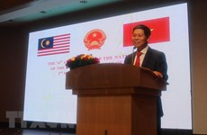 Vietnam visit by Malaysian PM promises practical outcomes: diplomat