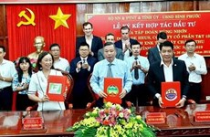 Over 73.2 mln USD to develop hi-tech agriculture projects in Binh Phuoc