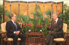 HCM City promotes comprehensive cooperation with Singapore