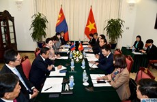 Vietnam, Mongolia hold eighth political consultation