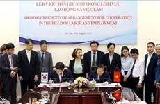 Vietnam, RoK foster comprehensive labour cooperation
