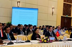 Vietnam attends 14th ASEAN Health Ministers' Meeting