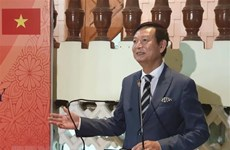Vietnamese Embassy in Egypt celebrates ASEAN's anniversary