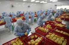 Forum mulls measures to boost farm produce export to RoK