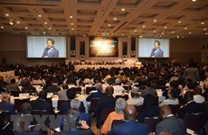 Deputy FM attends Tokyo int'l conference on African development