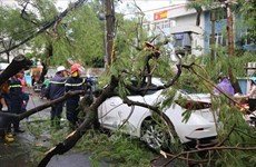 Storm Podul causes three deaths nationwide