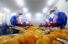 Vietnam's export turnover up 7.3 percent in eight months
