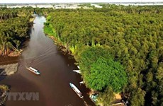 PM urges stepping up sustainable development in Mekong Delta