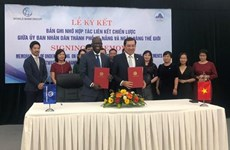Da Nang, WB sign new deal on strategic connectivity