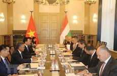Vietnam looks to strengthen ICT cooperation with Hungary