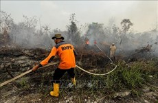 Indonesia: Over 39,000 people affected by haze smoke