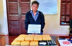 Thanh Hoa border guards seize seven bricks of heroin