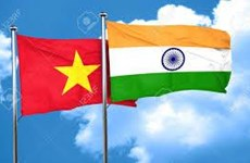 Defence cooperation – important pillar of Vietnam-India ties