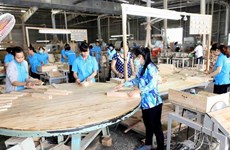 Vietnam likely to gain 11 billion USD from wood, forest products