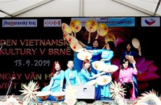 Vietnamese culture day held in Czech Republic