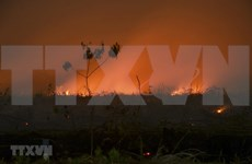 Haze from forest fires in Indonesia speads to neighbouring countries