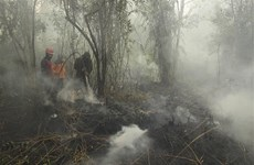 Malaysian government asks firms to control fires abroad