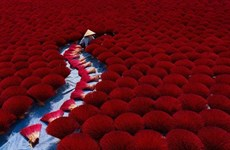 Vietnamese photographers become AGORA award finalists