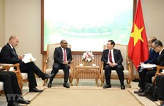 Vietnam aims to tighten ties with South Africa, Nigeria