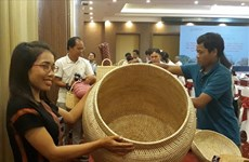 US-funded project helps develop rattan, herbal plants in Quang Nam