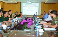 Vietnam prepares plan for Asia-Pacific peacekeeping conference