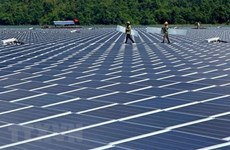 Vietnam, Singapore companies to jointly develop rooftop solar power