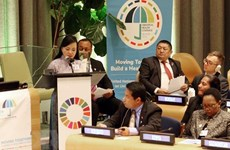 Vietnam shares experience in primary heathcare at UN meeting
