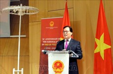 Vietnam prioritises preservation of cultural traditions: Ambassador