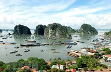 Ha Long-Cat Ba Alliance helps enhance efficiency of heritage management