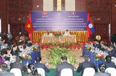 Legislatures of Vietnam, Laos share experience at joint workshop