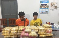 Vietnamese, Lao localities jointly bust massive drug trafficking ring